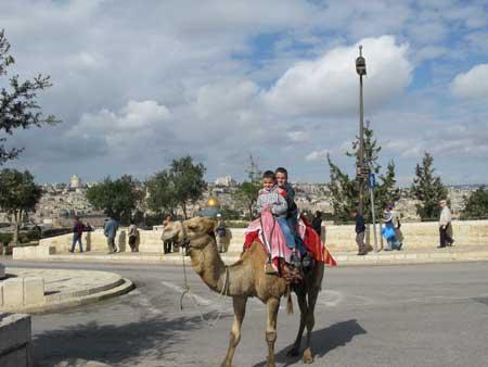 Viaje a Jerusalén y Belén. La tierra donde nació Jesús