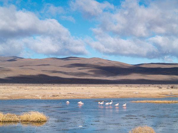 Atraviesa la Patagonia a través de la Ruta Azul