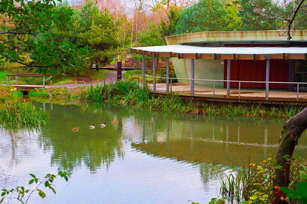 Jardin Botanico De Gijon Un Placer Natural Para Los Ninos Http
