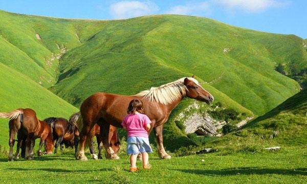 Turismo rural con ni os navarra viajar con hijos - Turismo rural galicia con ninos ...
