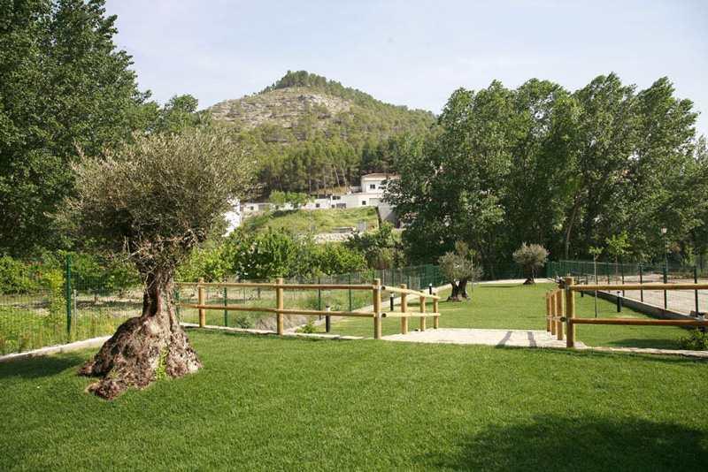 Casas-rurales-los-olivos_1339844360_o
