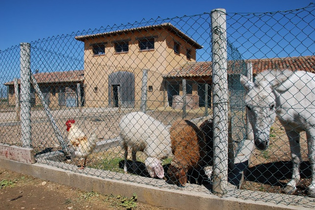casas rurales con niños
