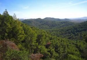 Ruta Interpretativa a Les Rodanes @ Vilamarxant, Valencia   Vilamarxant   Comunidad Valenciana   España