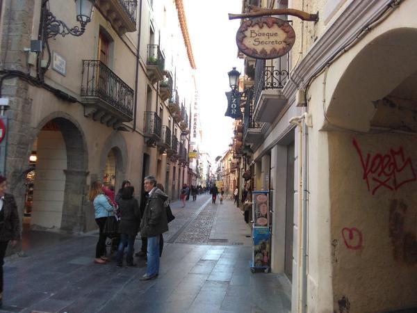 Las empedradas calles céntricas de Jaca muestran un casco antiguo eminentemente comercial en el que también se puede disfrutar la rica gastronomía, al mismo tiempo que se contemplan los monumentos, la riqueza patrimonial y se observa la dinámica vida ciudadana.