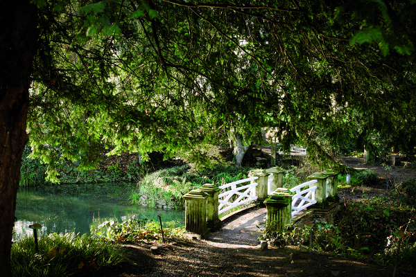 Jardín Botánico Atlántico - Alfonso Suárez