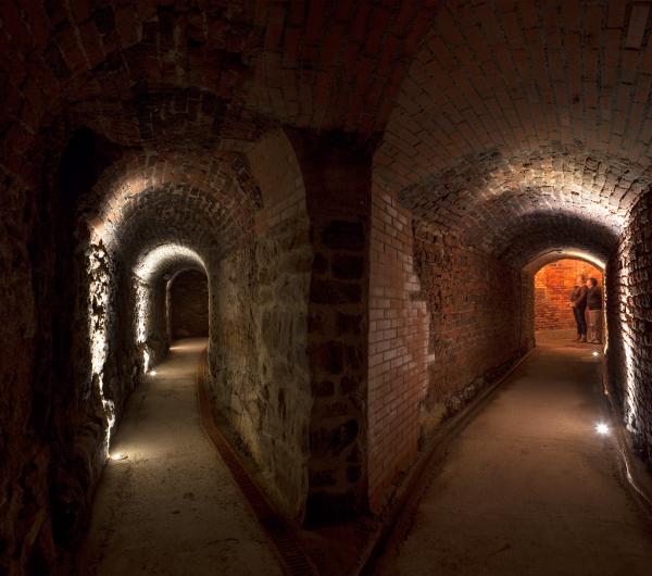 Túneles de la Mina de Arnao - Luis Argüelles