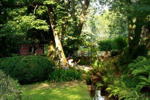 El Bosque de los Niños @  Jardín Botánico Atlántico | Gijón | Principado de Asturias | España