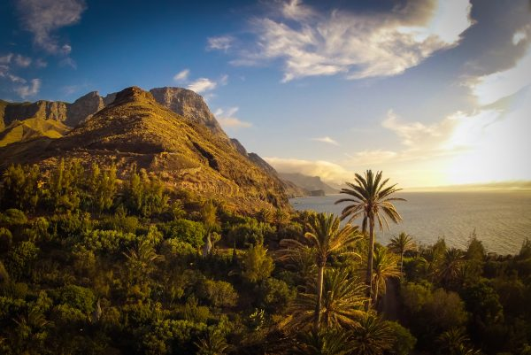 Guayedra Gran Canaria 001 e1555095571758 Гран   Канария: место отличного отдыха для всей семьи