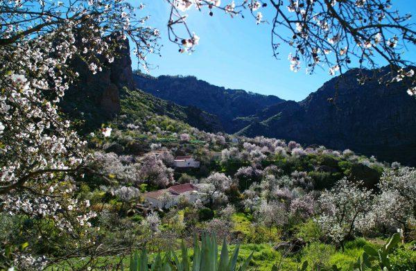 Interior de la isla e1555095482527 Гран   Канария: место отличного отдыха для всей семьи