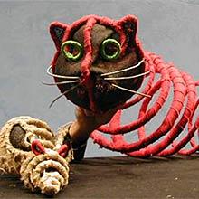Historia de una gaviota y del gato que le enseñó a volar @ Capela do Torrente Ballester